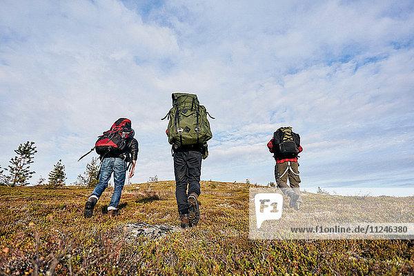 Wanderer überqueren Feld  Keimiotunturi  Lappland  Finnland