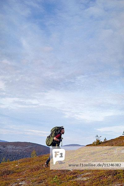 Wanderquerungsfeld  Keimiotunturi  Lappland  Finnland