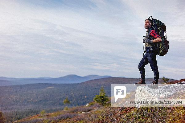 Wanderer genießt Aussicht auf Felsen  Keimiotunturi  Lappland  Finnland