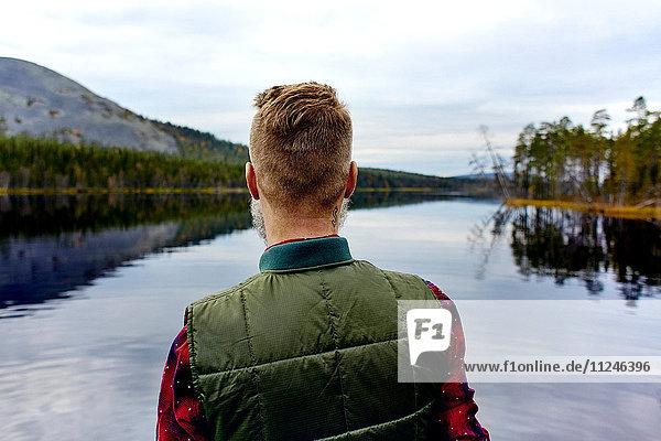 Wanderer mit Blick auf den See,  Kesankijarvi,  Lappland,  Finnland