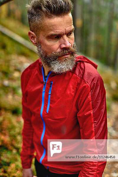 Wanderer beim Rückblick im Wald  Kesankitunturi  Lappland  Finnland