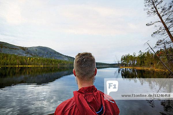 Mann mit Blick auf den See,  Kesankijarvi,  Lappland,  Finnland