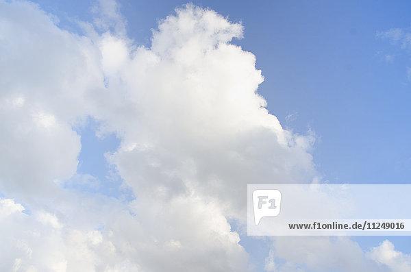 Cumulus cloud on blue sky