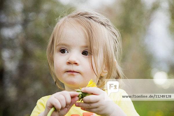 Portrait of girl (2-3) holding flower