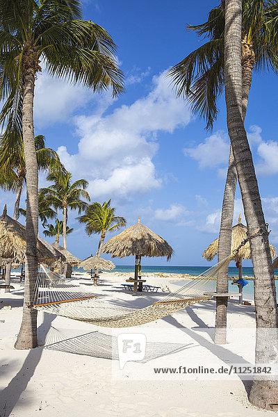 Caribbean  Netherland Antilles  Aruba  Hammock on Palm beach