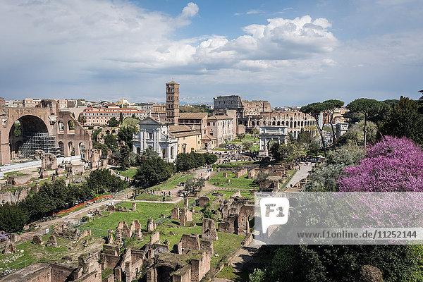 Rome  Lazio  Italy. Imperial fora