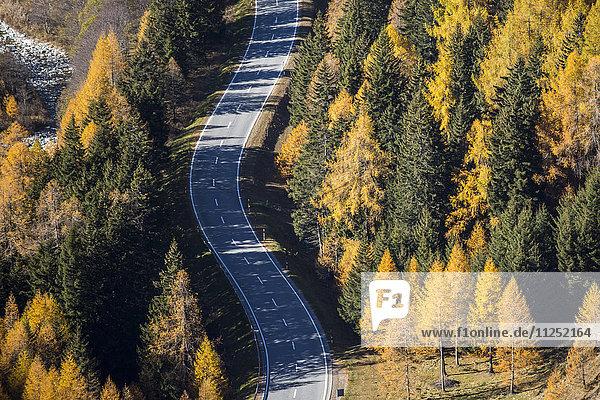 Road in autumnal environment. Maloja Pass  Engadin  Graubunden  Switzerland.