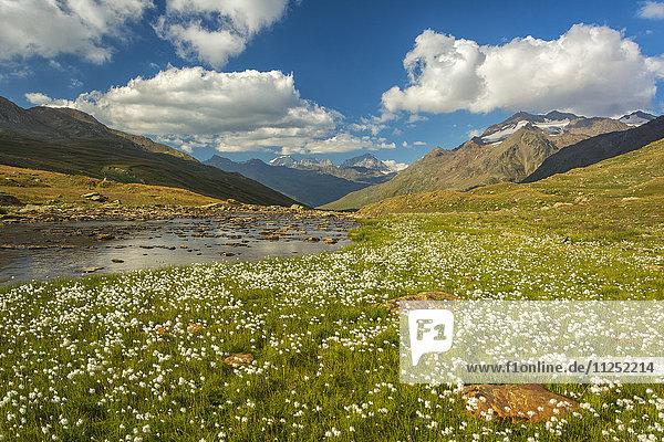 Gaviapass  Stelvio national park province of Brescia  Italy.