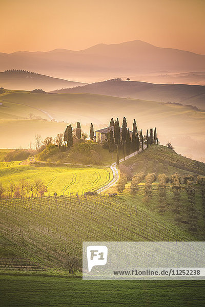 Podere Belvedere  San Quirico d'Orcia  Val d'Orcia  Tuscany  Italy