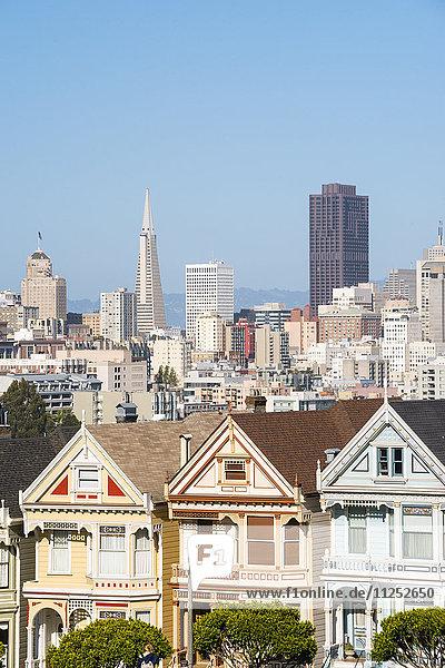 North America  USA  America  California  San Francisco  Alamo Square  the painted ladys and city skyline