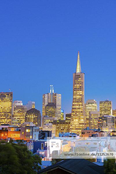 North America  USA  America  California  San Francisco  Transamerica building and downtown skyline at dusk