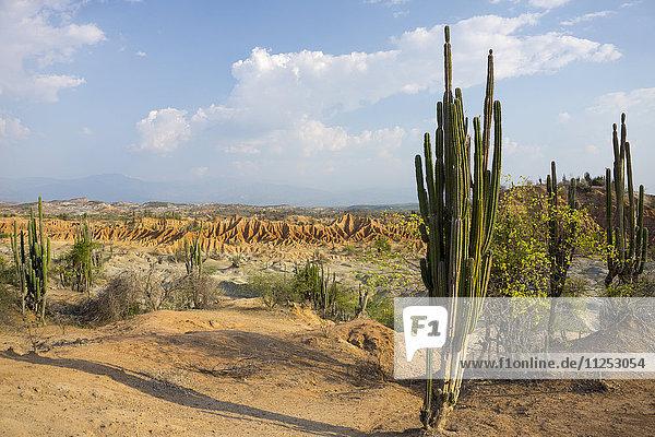 Desierto de Tatocoa (Tatacoa Desert)  Colombia  South America