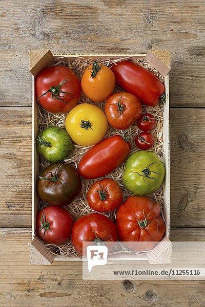 Bunte Tomaten in einer Steige
