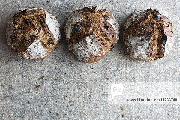 Drei runde Krustenbrote aus Kastanienmehl mit Rosinen und Haselnüssen