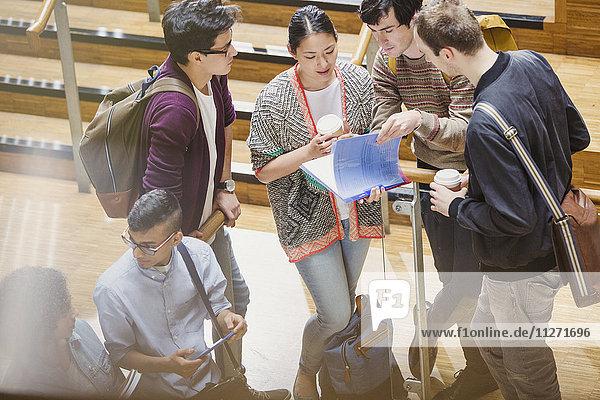 Studenten mit Kaffee bei Hausaufgabenbesprechung