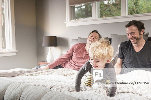 Caucasian fathers playing on bed with son Caucasian fathers playing on bed with son