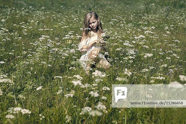 Caucasian girl crouching in field picking wildflowers