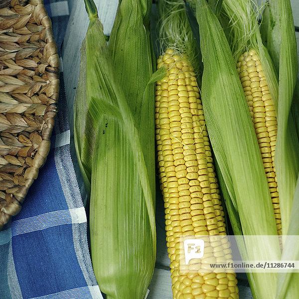 Corn on cobs with husk Corn on cobs with husk