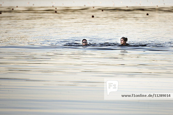 Women swimming