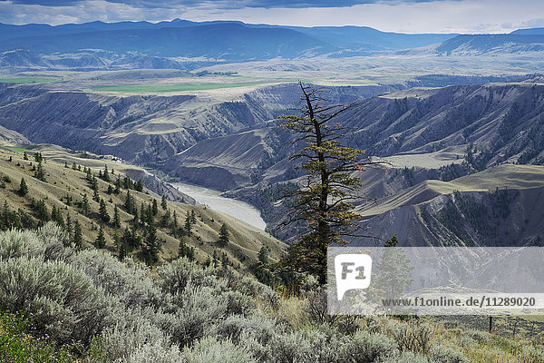 Rangeland in the Cariboo Region of British Columbia with the Fraser River and Rocky Mountains in the distance  Canada