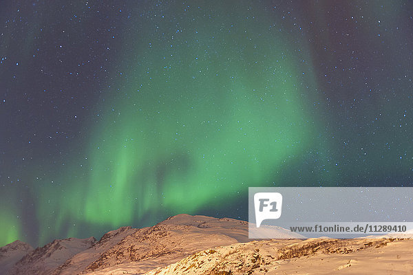 Nothern Lights with Mountains in Tromso  Troms  Norway