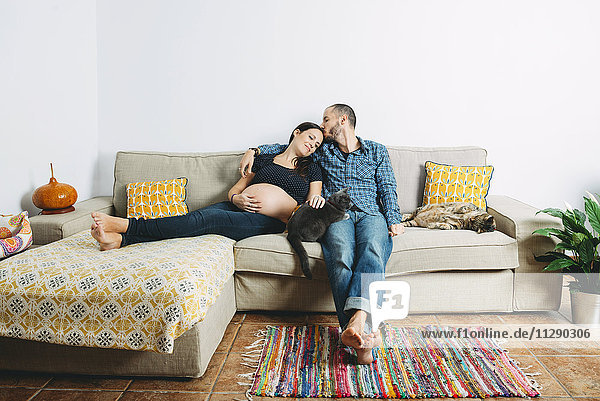 Ein glückliches Paar erwartet ein Baby  das zu Hause mit zwei Katzen auf der Couch sitzt.