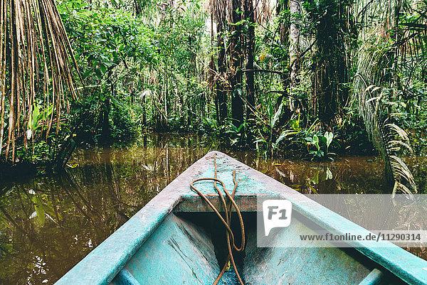 Peru  Tambopata  Boot auf dem Amazonas