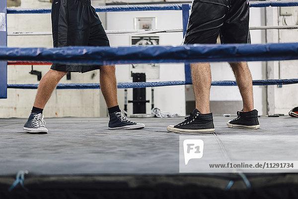 Beine von zwei Boxern im Boxring
