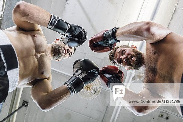 Niederwinkelansicht von zwei Boxern