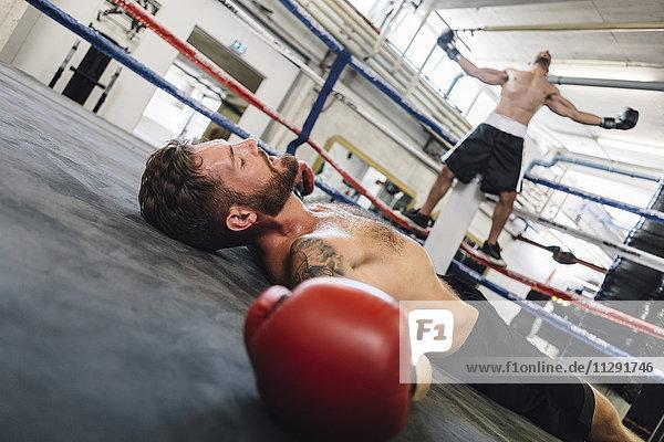 Ausgeschlagener Boxer im Boxring liegend