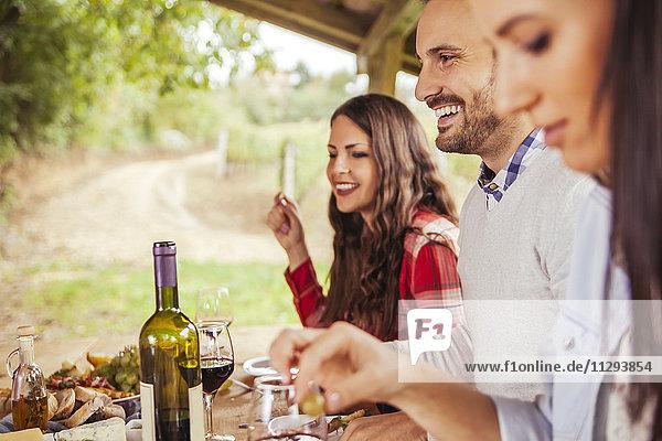Freunde treffen sich am Tisch im Freien bei Rotwein und kalten Snacks.