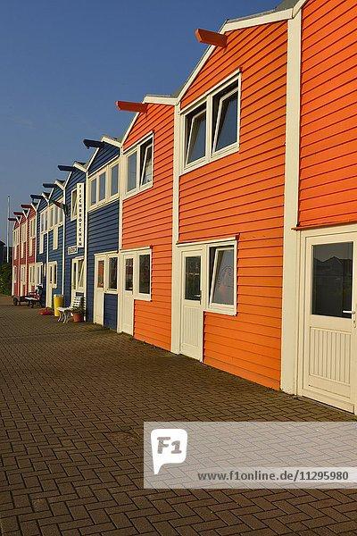 Bunte Hummerbuden auf dem Unterland  Insel Helgoland  Nordsee  Schleswig-Holstein  Deutschland  Europa