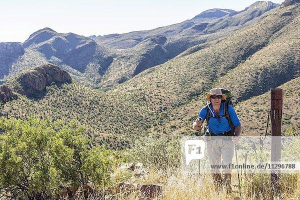 Wanderer mit Rucksack und Stöcken  Auasberge bei Windhoek  Namibia  Afrika