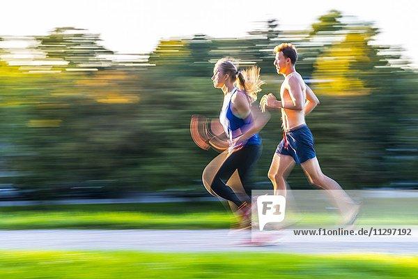Mitzieher  Junge Frau und junger Mann in Sportkleidung beim Joggen in einem Park  München  Oberbayern  Bayern  Deutschland  Europa
