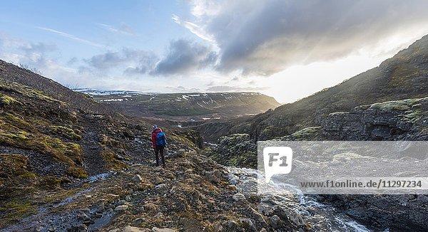 Junge Frau auf Wanderweg  Canyon des Glymur  Hvalfjarðarsveit  Vesturland  Island  Europa