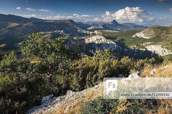 Berglandschaft an der Verdonschlucht  Regionaler Naturpark Verdon  Provence  Provence-Alpes-Cote-d'Azur  Frankreich  Europa