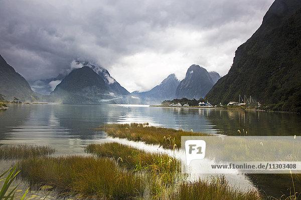 Ruhiger See und Berge  Milford Sound  Südinsel  Neuseeland