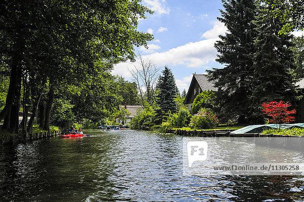 Germany  Brandenburg  Luebbenau  Lehde  paddleboats