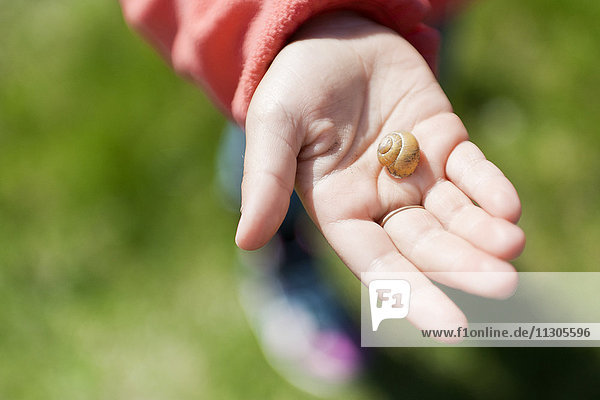 Girl holding snail in hand