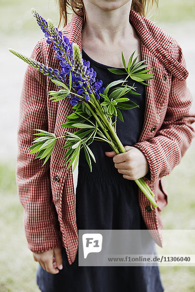 Girl holding lupine flower