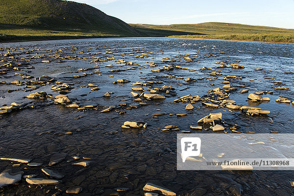 kokolik river  Alaska  USA  national petroleum reserve