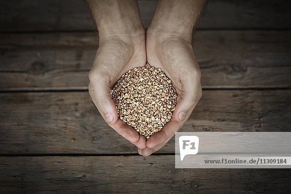 Oat flakes in mans hands  close-up