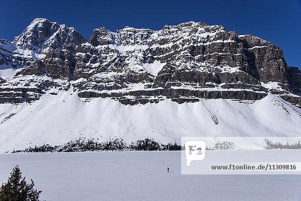Banff  national park  alberta  canada  lake  mountains  landscape  frozen  skier