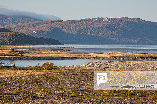 Europe  autumn  autumn colors  coast  scenery  landscape  Lapland  sea  Norway  Scandinavia  Stabbursdalen  national park  water
