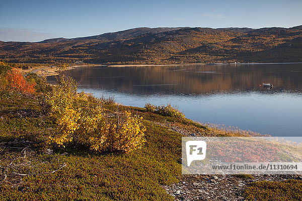 Europe  fjord  autumn  autumn colors  coast  scenery  landscape  Lapland  sea  Norway  Oldernes  Repparfjord  Scandinavia  reflection  water