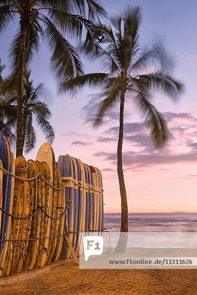 USA  Hawaii  Oahu  Waikiki Beach