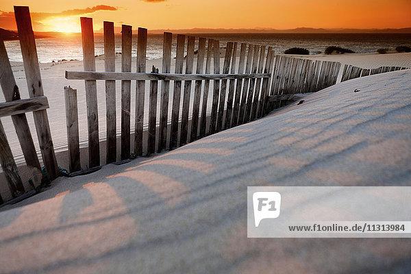 Spanien  Andalusien  Punta Paloma Sanddünen bei Tarifa bei Sonnenuntergang