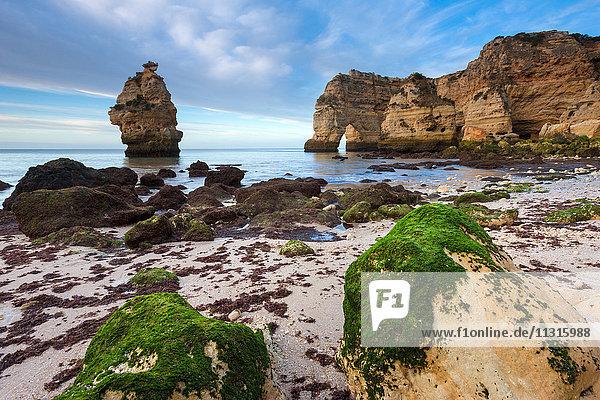 Praia da Marinha  Portugal  Algarve
