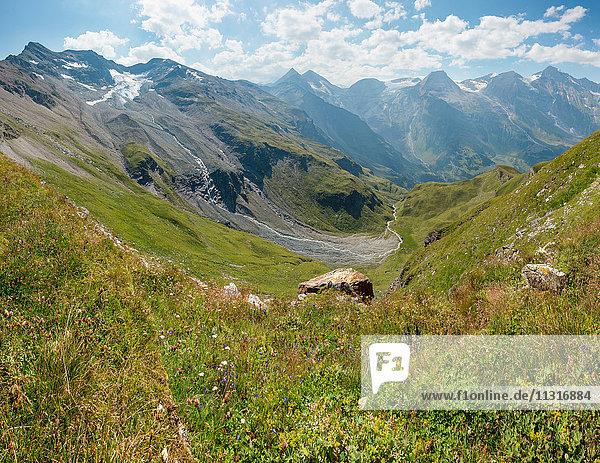 Ferleiten  Austria  Grossglockner High Alpine Road  alpine meadow