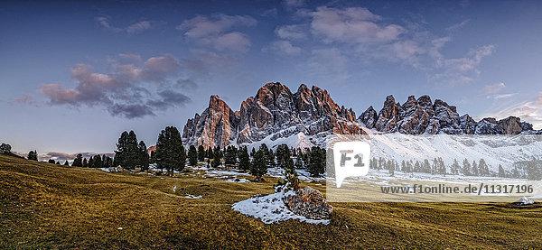 Italien  Naturpark Geisler Puez  Alm mit Geisler-Gruppe und Sass Rigais im Hintergrund